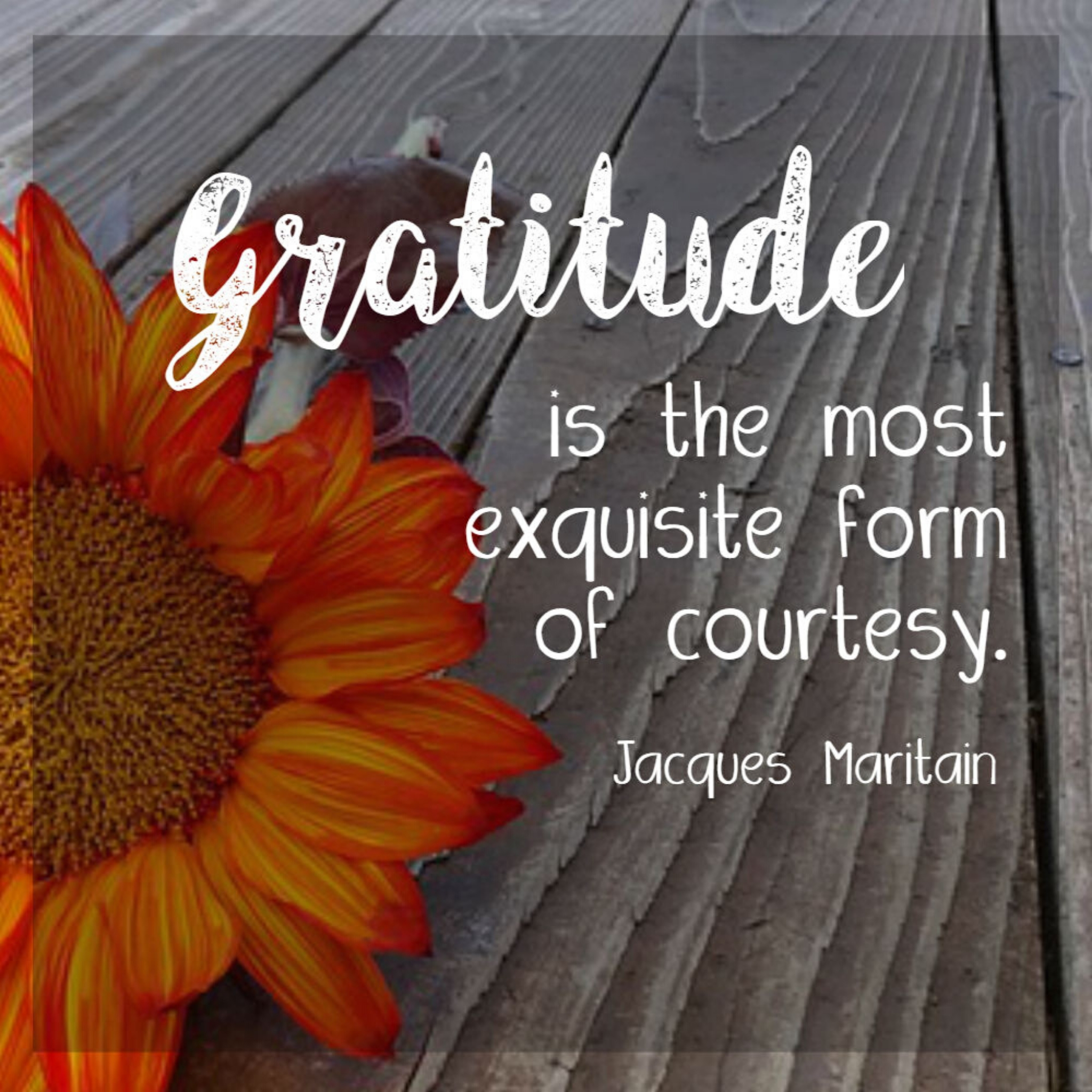 How Gratitude can Change your Life!